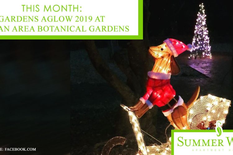 This Month: Gardens Aglow 2019 at Dothan Area Botanical Gardens