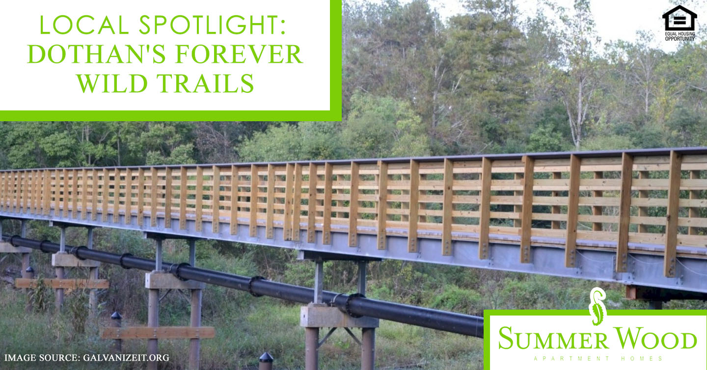 Dothan's Forever Wild Trails
