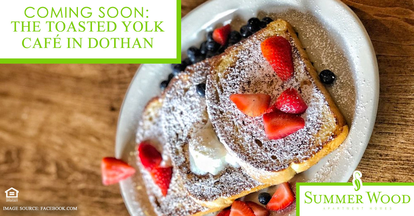 Coming Soon: The Toasted Yolk Café in Dothan